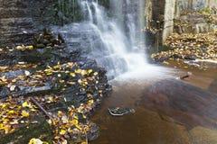 与秋叶的瀑布 免版税图库摄影