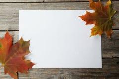 与秋叶的白色板料在灰色木背景 图库摄影