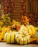与秋叶的秋天南瓜 免版税图库摄影