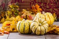 与秋叶的秋天南瓜 库存照片