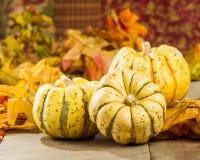 与秋叶的秋天南瓜 免版税库存照片