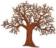 与秋叶的结构树 免版税图库摄影
