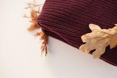 与秋叶的羊毛布料 免版税图库摄影
