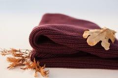 与秋叶的羊毛布料 免版税库存图片