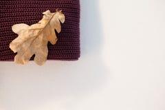与秋叶的羊毛布料 免版税库存照片