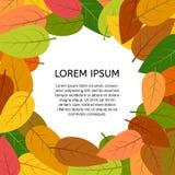 与秋叶的背景与一个地方在中心您的文本 库存照片