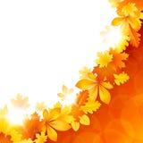 与秋叶的背景 库存图片