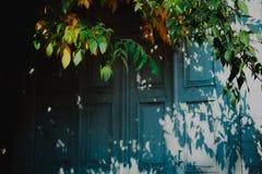 与秋叶的蓝色门 免版税库存照片