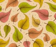 与秋叶的装饰无缝的样式 库存照片