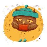 与秋叶的逗人喜爱的猫头鹰 字符猫头鹰,秋天 库存图片