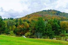 与秋叶颜色的树木丛生的小山在Sainte阿黛尔 免版税库存图片