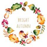 与秋叶,花,分支,莓果的五颜六色的秋天花圈 图库摄影