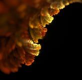 与秋天下跌的叶子纹理的抽象黑背景 库存图片