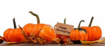 与秋天南瓜边界的愉快的感恩标记在白色的 免版税库存照片