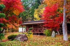 与秋天叶子叶子的木客舱 库存图片