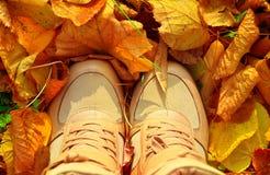 与秋天叶子和妇女鞋子的秋天背景 免版税库存图片