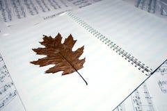 与秋天叶子的便条纸在活页乐谱背景  音乐和秋天的概念 库存图片