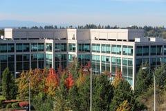 与秋天叶子的办公楼 免版税库存图片