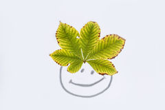 与秋天叶子的被绘的面孔头发的 库存图片