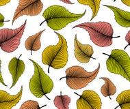 与秋天叶子的装饰无缝的样式 免版税库存照片