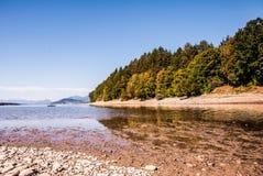 与秋天树和清楚的天空的湖反射 免版税库存照片