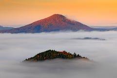 与秋天树的小山在雾覆盖,白色波浪 在漂泊瑞士公园秋天谷的有雾的早晨,风景  免版税库存照片