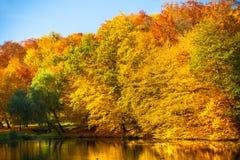 与秋天树的水在公园 图库摄影