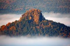 与秋天树的Zirkelstein在雾覆盖,白色波浪,在萨克森瑞士的秋天谷的有雾的早晨,德国 小山 库存照片