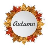 与秋天槭树叶子的圆的标签 查出的秋天美好的框架离开实际白色 库存照片