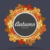 与秋天槭树叶子的圆的标签 查出的秋天美好的框架离开实际白色 免版税库存图片
