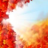 与秋天槭树叶子的秋天背景 免版税库存图片