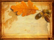 与秋天橡木叶子的老难看的东西纸 免版税库存图片