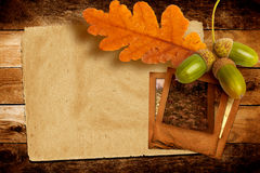 与秋天橡木叶子的老难看的东西幻灯片 库存照片