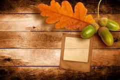 与秋天橡木叶子的老难看的东西幻灯片 免版税库存图片