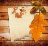 与秋天橡木的老难看的东西纸离开和橡子 库存照片