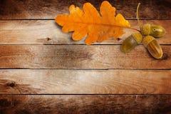 与秋天橡木的老难看的东西纸离开和橡子 免版税库存照片