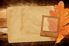与秋天橡木的老难看的东西纸幻灯片离开 库存照片