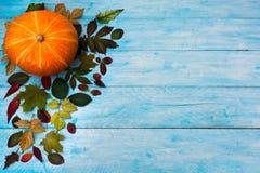 与秋天的愉快的感恩在蓝色背景离开 免版税库存图片