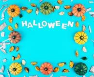 与秋天的装饰南瓜离开框架 库存图片