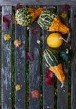 与秋天的装饰金瓜在一条土气长凳离开 库存图片