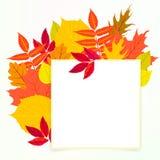 与秋天装饰和叶子的传染媒介卡片 免版税库存照片