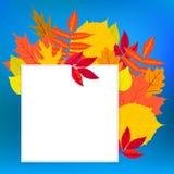 与秋天装饰和叶子的传染媒介卡片 免版税图库摄影