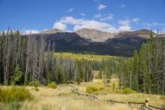 与秋天颜色的五颜六色的科罗拉多山 免版税图库摄影