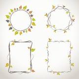 与秋天颜色的花卉框架 免版税库存照片
