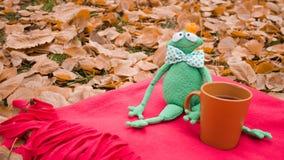 与秋天风景的可笑的明信片一种好心情的 免版税图库摄影