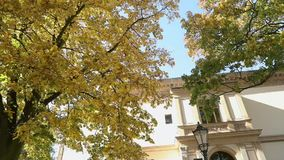 与秋天黄色的美丽的大树在老别墅,与黄色叶子的树前面离开在背景  影视素材