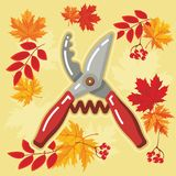 与秋天leaves_5的秋天农业象 免版税库存图片