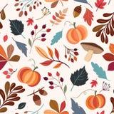与秋季元素的无缝的样式 免版税库存照片