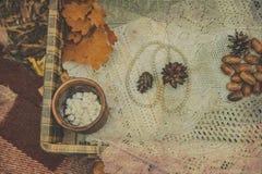 与秋季橡子的白色perls和conesyellow leavescup用在鞋带桌布的糖果 葡萄酒定了调子背景 有选择性的fo 库存照片