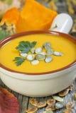 与种子和荷兰芹的南瓜汤 免版税库存照片